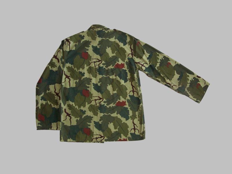 Uruguayan camouflage 100_5514