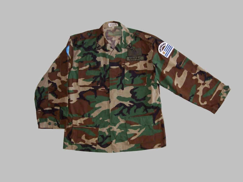Uruguayan camouflage 100_5518