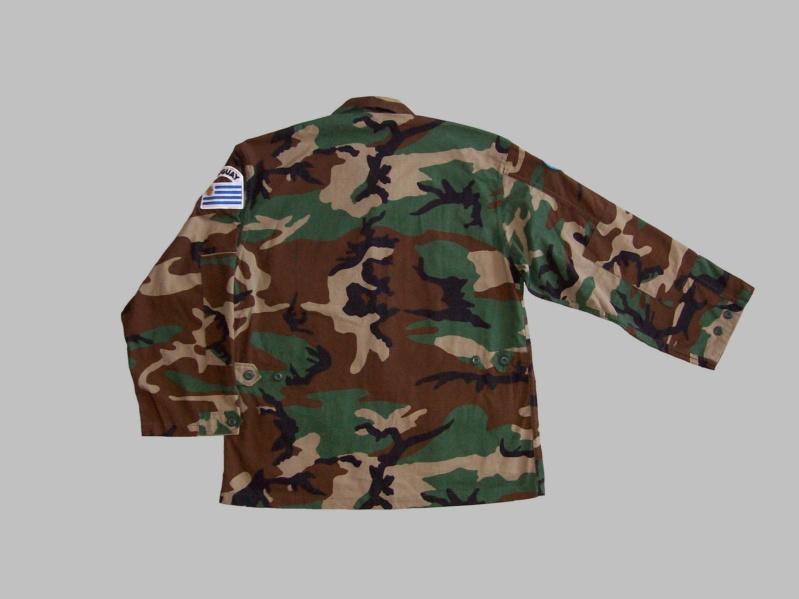 Uruguayan camouflage 100_5519