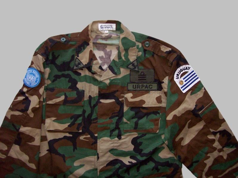 Uruguayan camouflage 100_5520