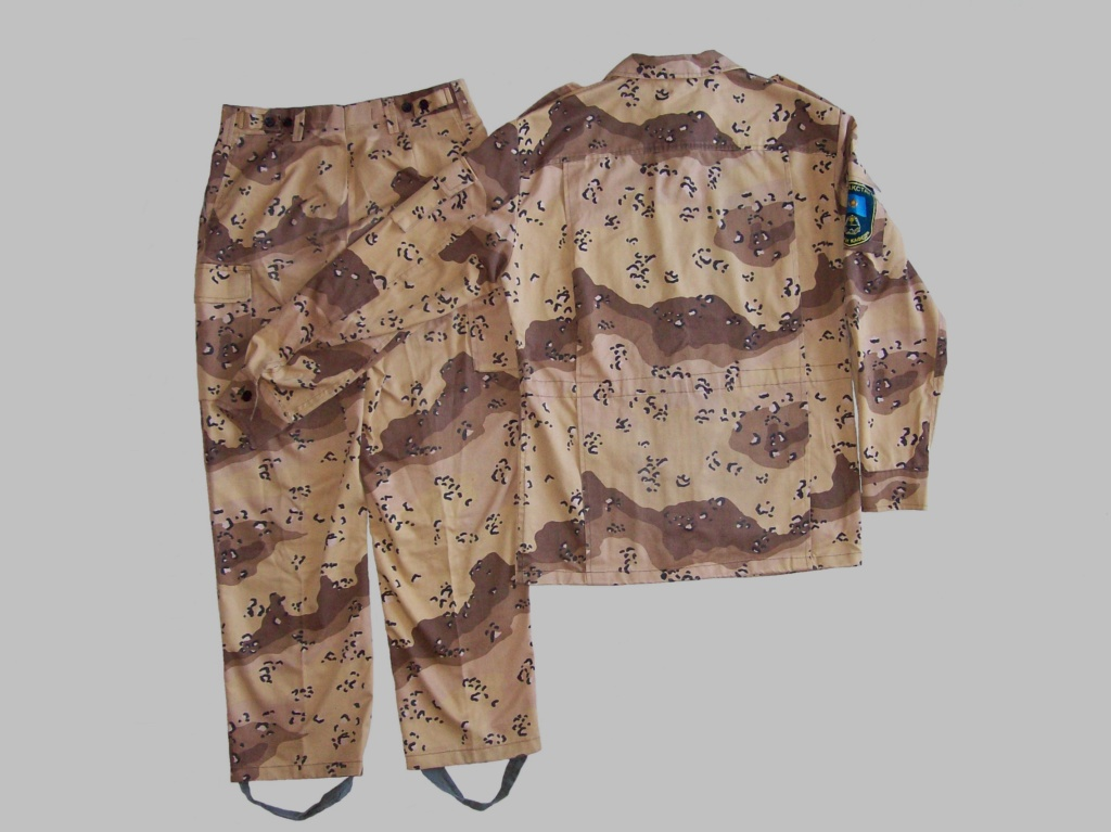 Kazakhstan desert pattern 100_7023