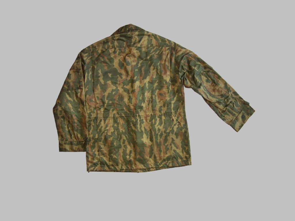 Belarussian camouflage - Page 3 100_7226
