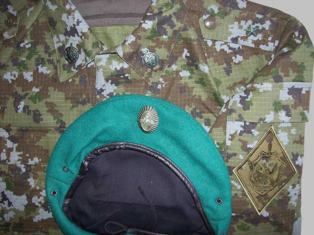 Russian camo uniforms - Page 6 100_8216