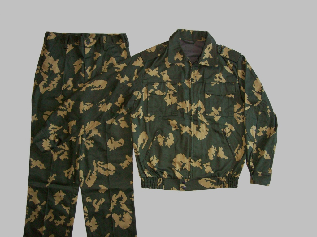 Belarussian camouflage - Page 3 100_9820