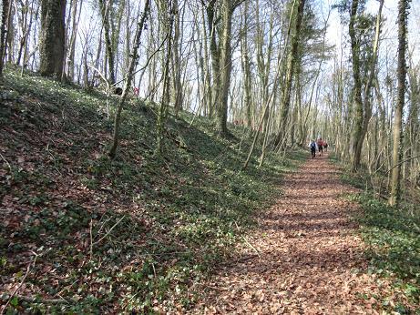 [Trail des Poilus-2012]Hemil Dsc00117