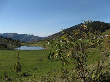 Balade dans les combes des Aravis (Hte Savoie) Laccon10