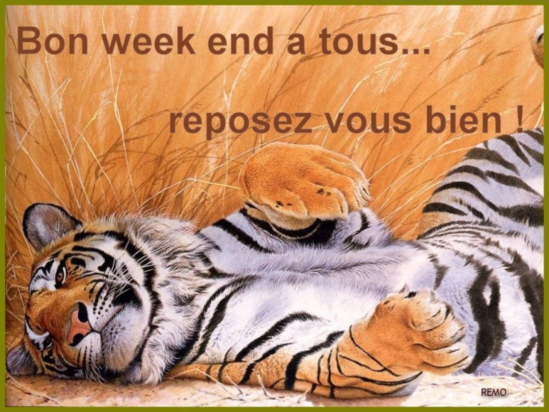 Bonjour, bonsoir, bonne nuit ... - Page 3 We110