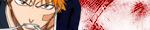 Shinigami remplaçant / Vizard