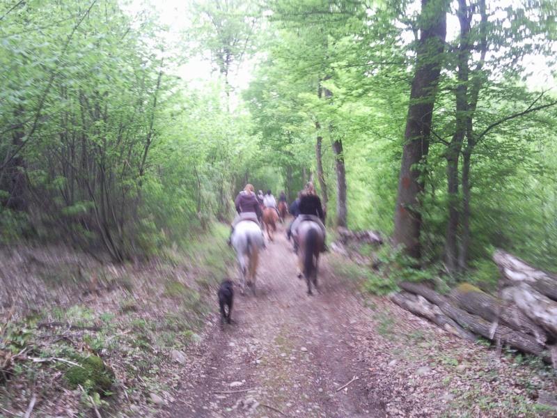 Balade en forêt de Bonnevaux dimanche 13 mai - Page 4 Pic00054