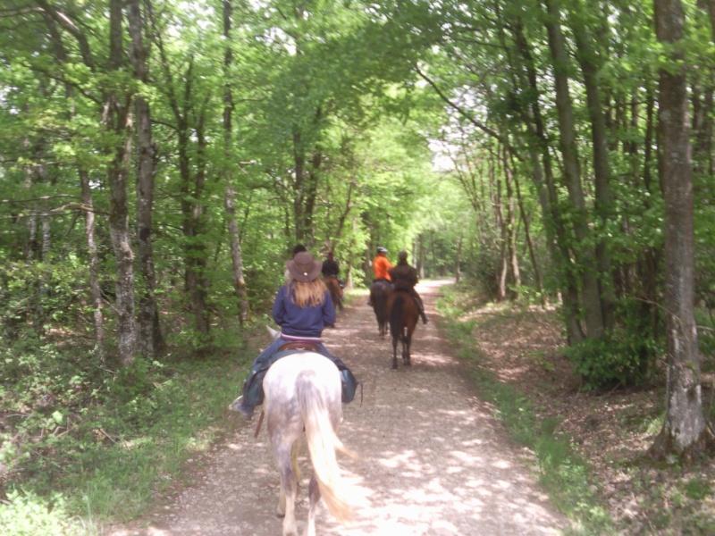 Balade en forêt de Bonnevaux dimanche 13 mai - Page 4 Pic00057