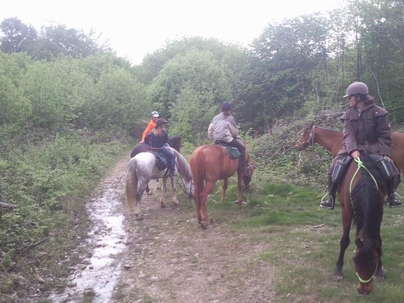 Balade en forêt de Bonnevaux dimanche 13 mai - Page 4 Pic00058