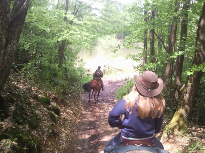 Balade en forêt de Bonnevaux dimanche 13 mai - Page 4 Pic00060