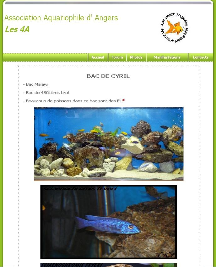 Integration du forum au site Les4a510