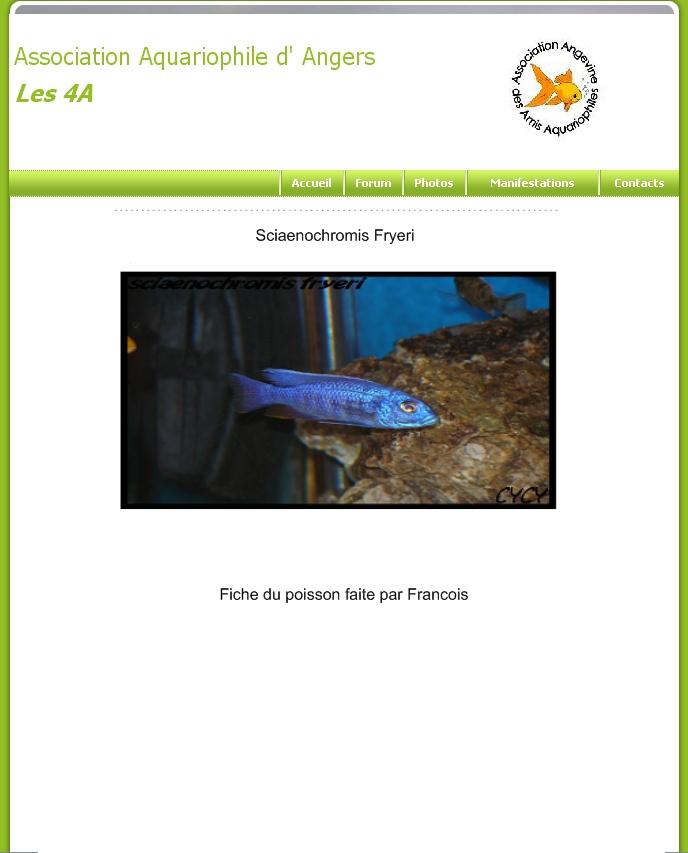 Integration du forum au site Les4a610