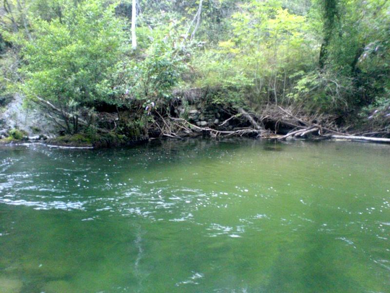 Et au milieu coule une rivière ... Dsc01868