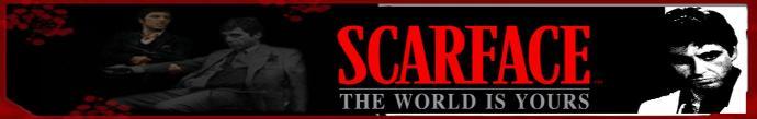 pyetje Scarfa10