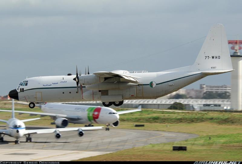 طائرة النقل سى-130 هرقل  CC-130 Hercules 13348610