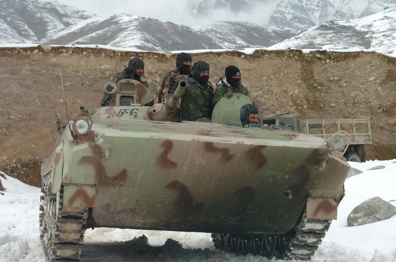 Armée Afghane/Afghan National Army(ANA) Bmp-110