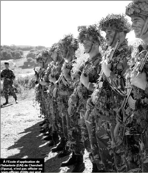 الجيش الجزائري Info_c10