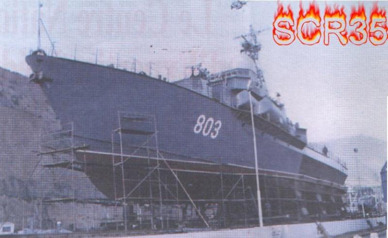 تطور الصناعة الجزائرية العسكرية الثقيلة  بشكل ملحوظ من الشراكة الى الاعتماد الذاتي الكلي . Swscan13