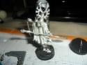 Pour la gloire d'Isha: les eldars d'Yggdrasil - Page 4 Sam_0061