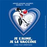 Schéma de la vaccination chez le chien et le chiot Images17