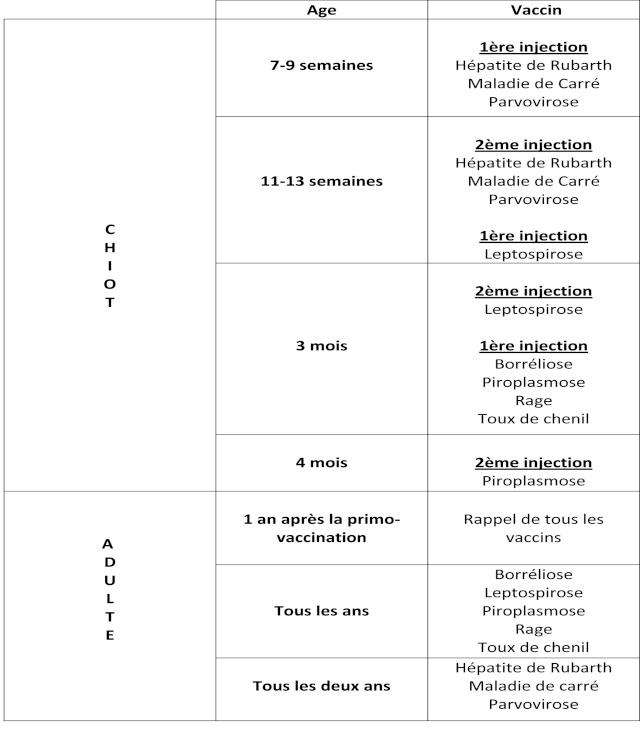 Schéma de la vaccination chez le chien et le chiot Tablea11