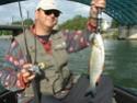 Pêche du chevesne aux leurres Rca15a10
