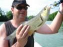 Pêche du chevesne aux leurres Sortie45
