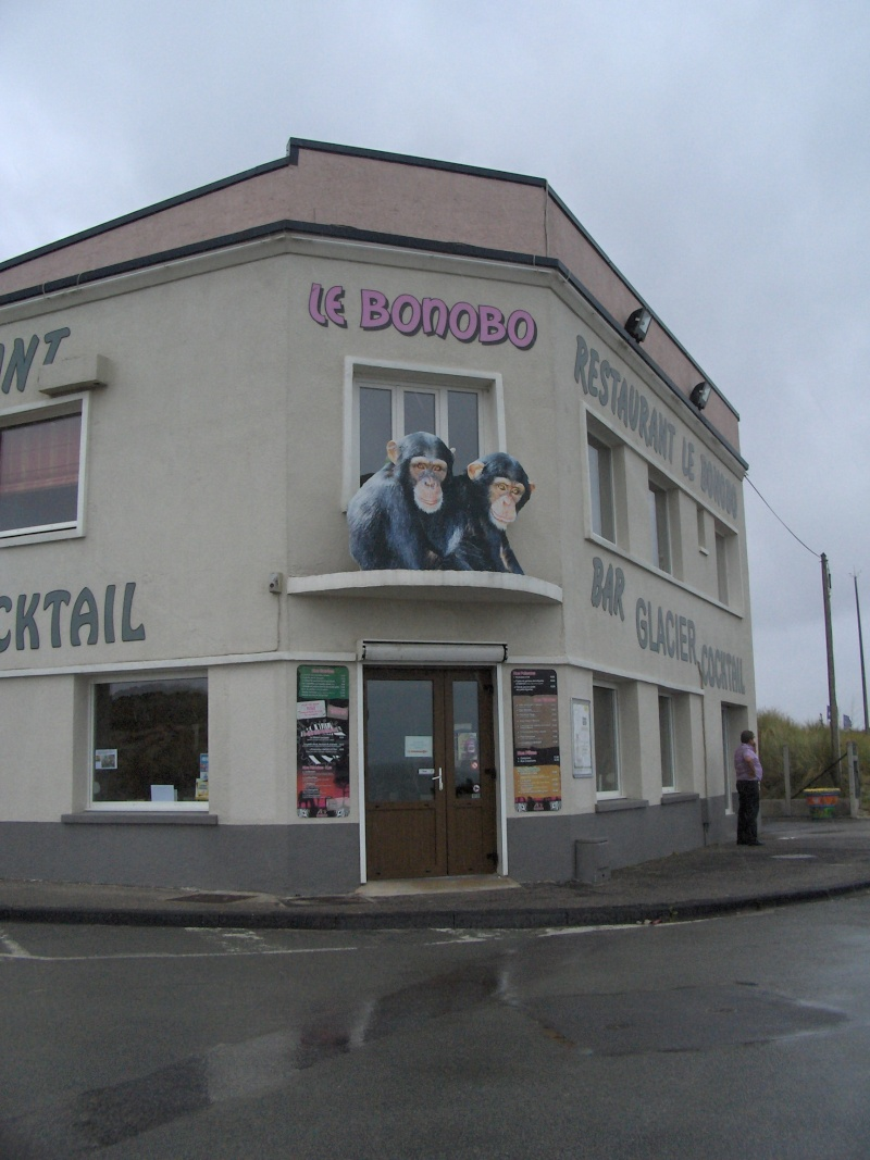 Restaurant Le bonobo ** Hpim3217