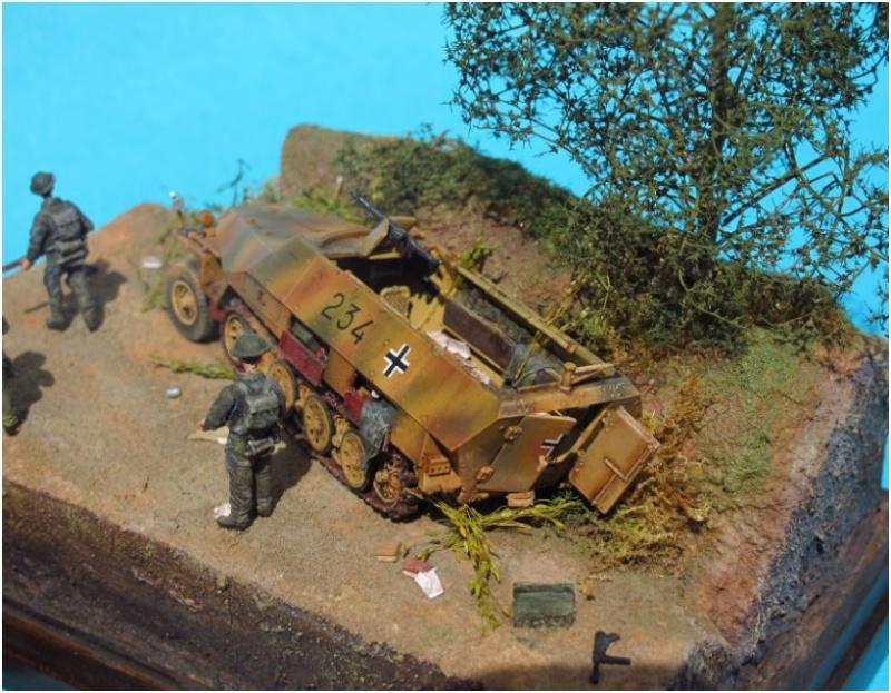 sdkfz 251 D dragon 1/72° Sd3_210