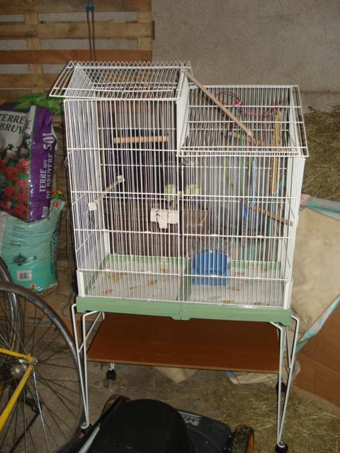 Cage Dsc05015