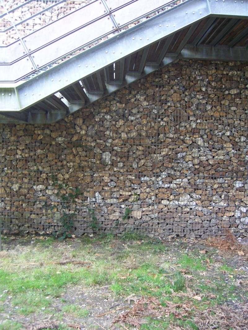 conservation crottes 100_2813