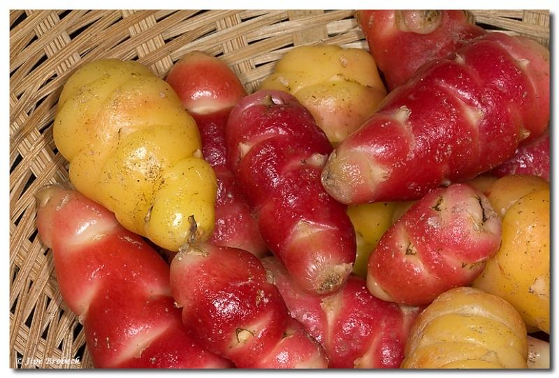 Cuisiner les légumes d'automne et d'hiver - Page 3 Img_0510
