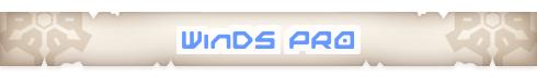 WinDS PRO 12 BETA Y WinDS PRO 11 FULL PORTABLE (emulador de GB,GBC,GBA y NDS) Logo10