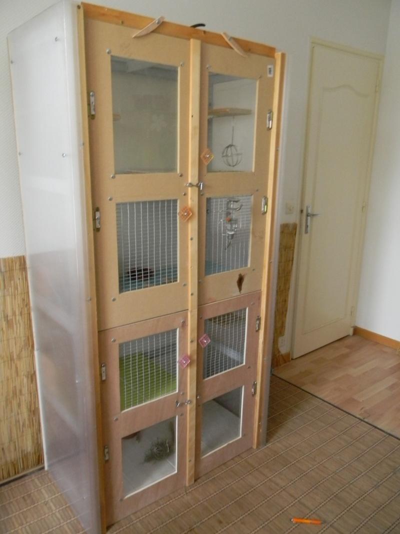 les cages  Dscn3812