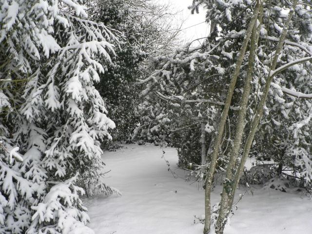 vive la neige !!  Jeux_d39