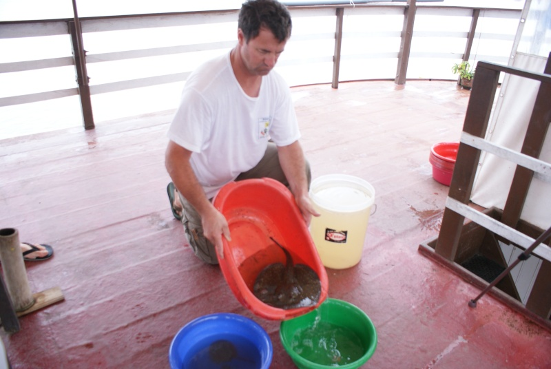 Voyage au Pérou (croisière aquario solidaire 2012)  - Page 2 Dsc06411