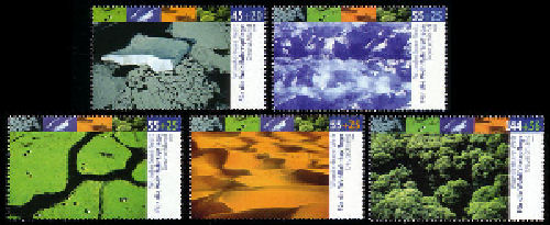 Regenwald De242310