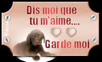 créer un forum : basset hound aventures - Portail 10021610