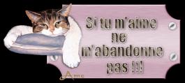 créer un forum : basset hound aventures - Portail 10021611