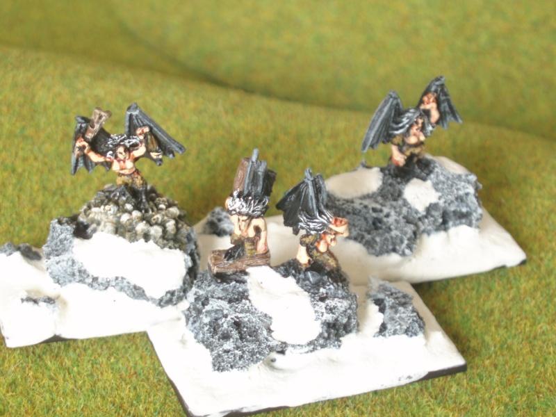 2700 points d'Elfes Noirs Harpie12