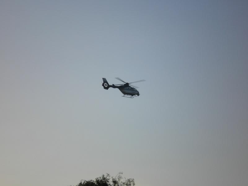 Elicoptere civile, militare, utilitare - 2008 - Pagina 2 P6290610