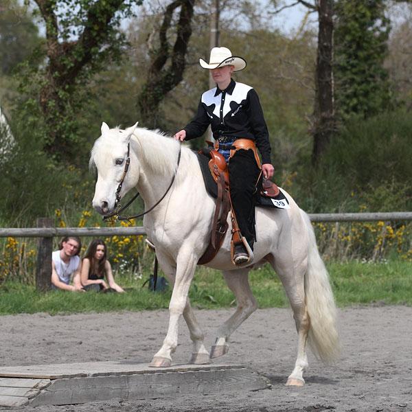 WHITE CYCLONE LI Sarzea13