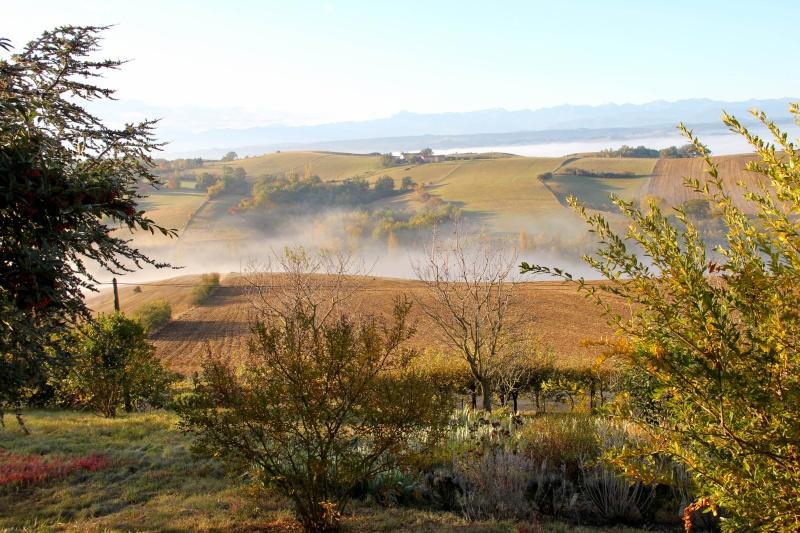 Les couleurs de l'automne... Img_3913