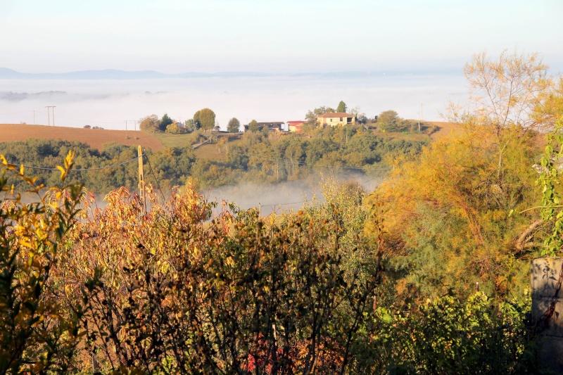Les couleurs de l'automne... Img_3915