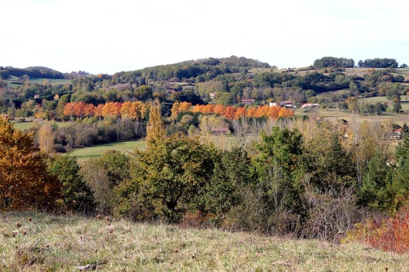 Les couleurs de l'automne... Img_3916