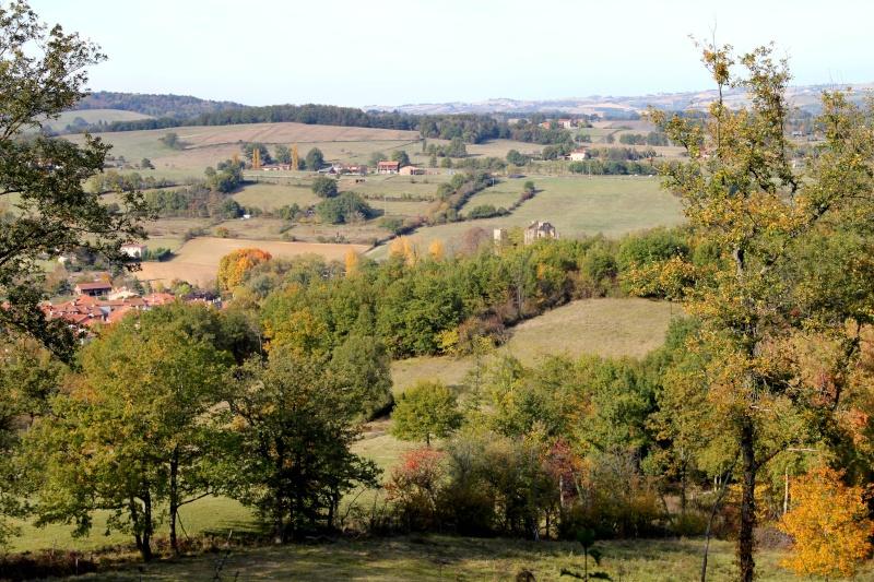Les couleurs de l'automne... Img_3917
