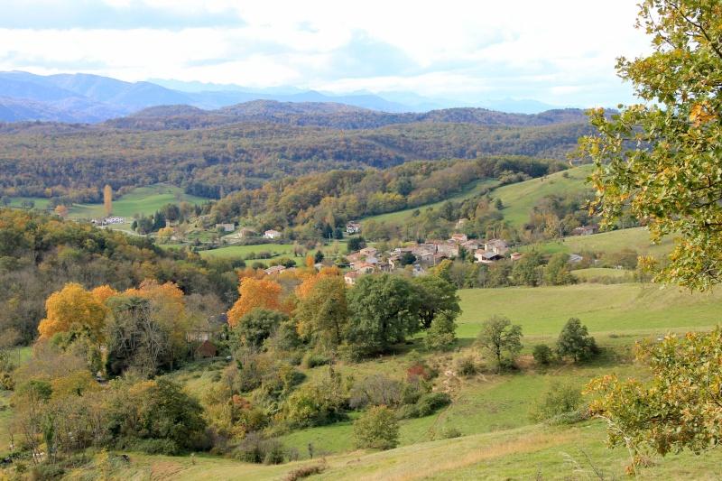 Les couleurs de l'automne... Img_3936