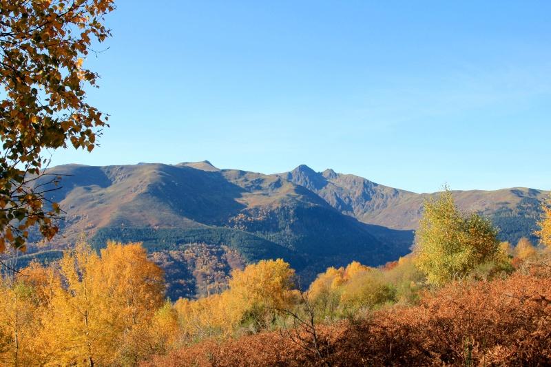Les couleurs de l'automne... Img_4031